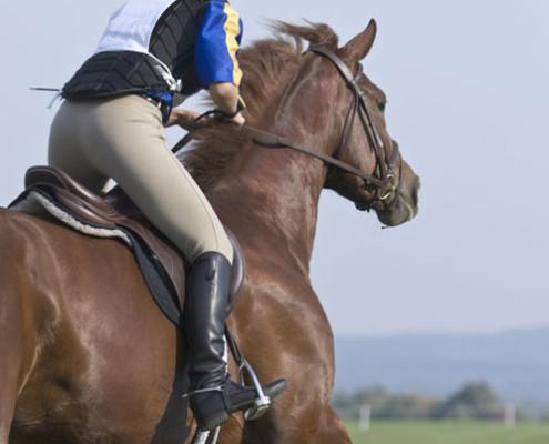 eventing-rider